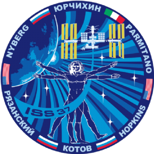 Expedition 37 Mission Decal
